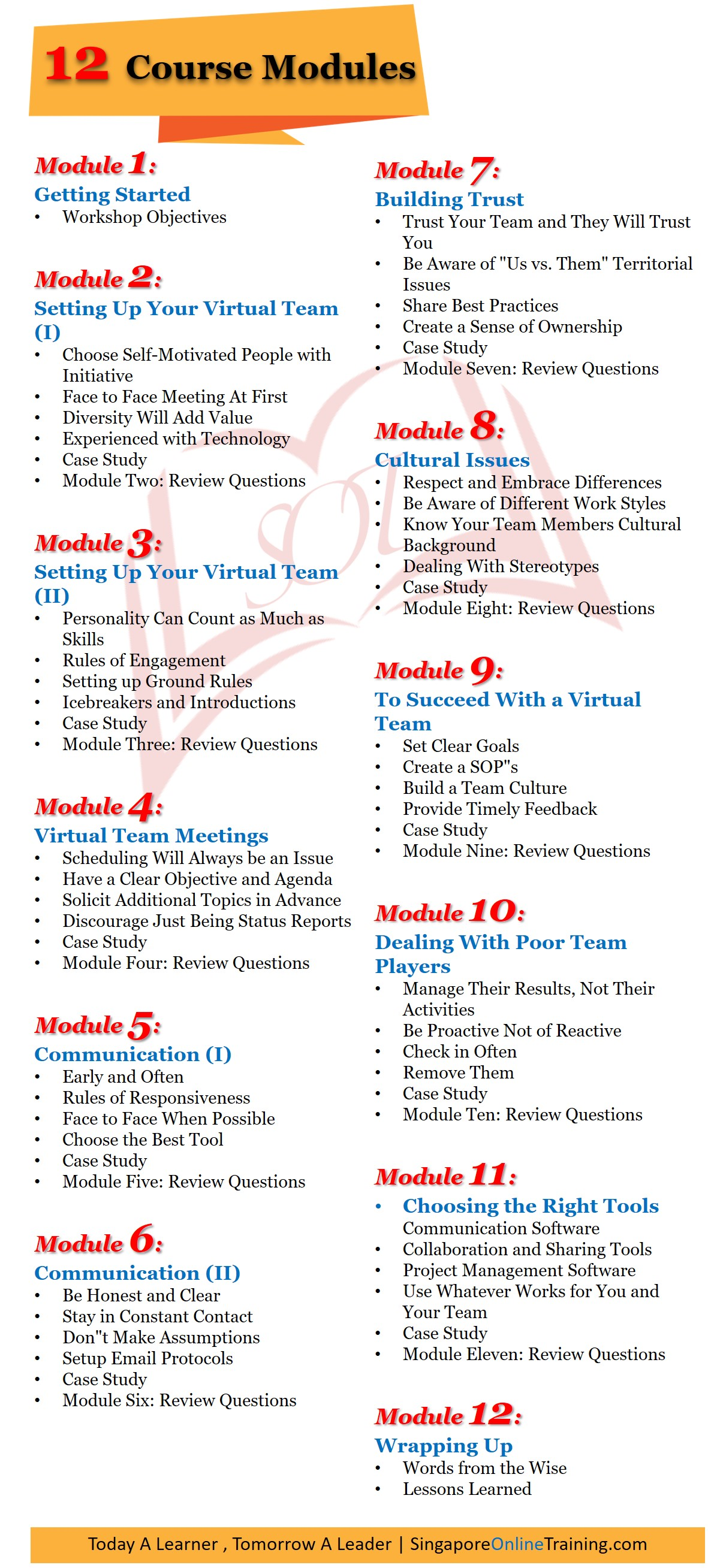 Virtual Team Building and Management Course Modules